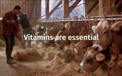 Vitamins are essential