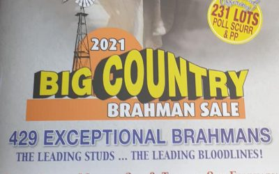 Blair Agri is in Charters Towers