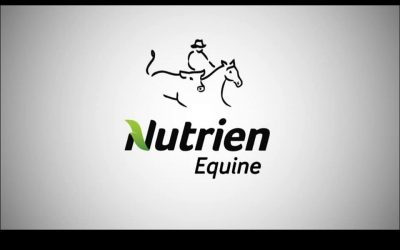 National Nutrien Classic Sale & Campdraft
